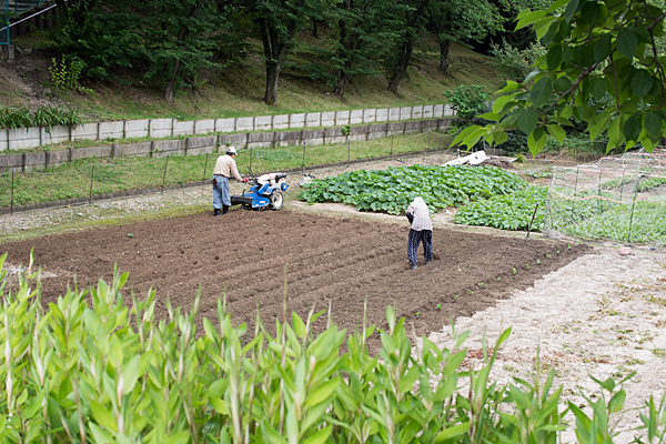 畑を耕す農家さん