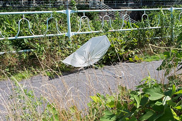 緑道と壊れた傘