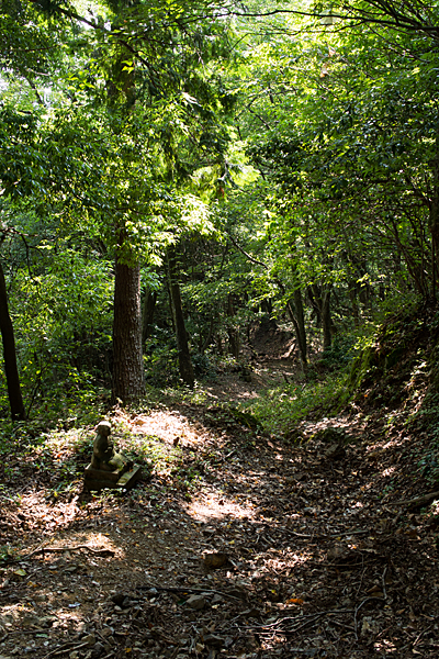 散策路と石仏