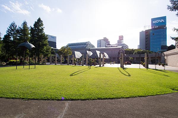 芝生広場とパティオ風
