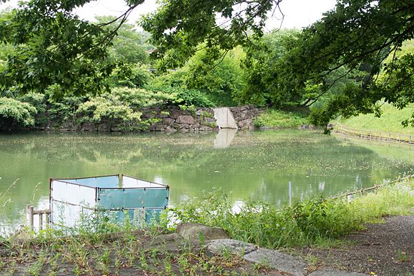 小さな溜め池