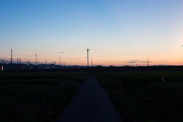 日暮れの矢勝川沿い風景