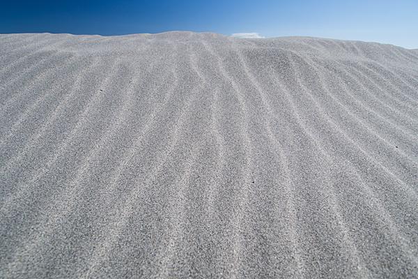 砂丘と風紋