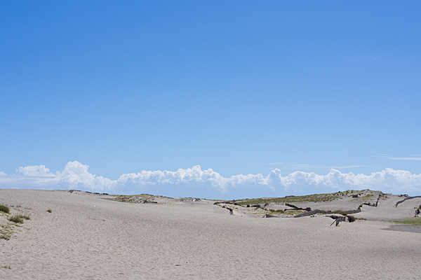 中田島砂丘全景