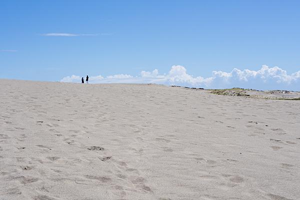 砂丘のスケール感