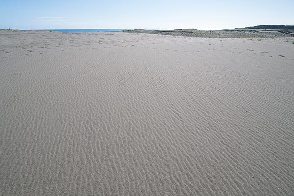 風紋と遠州灘