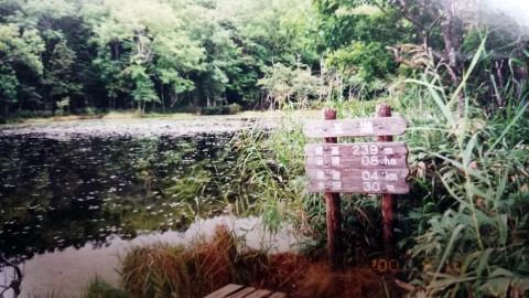 知床五湖(2000年)