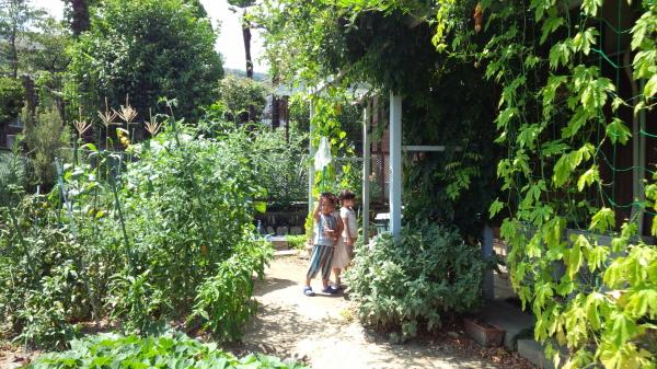 宝塚市南口望月ハウスの庭