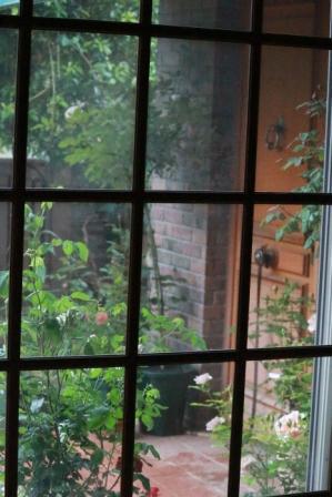 IMG_0663雨の日