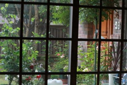 IMG_0657雨の日