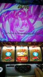 DSC_1078.jpg