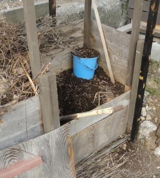2016004 バケツで堆肥を運ぶ