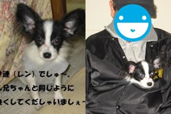 ren_a.jpg