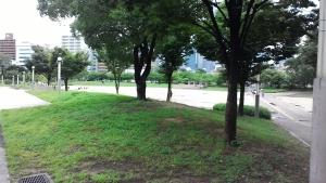 2016_07_09_001.jpg