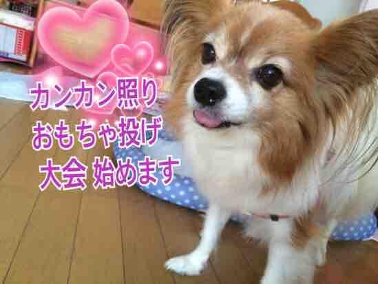 fc2blog_20160802200820f0f.jpg