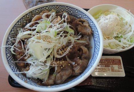 yoshinoya-R7tsuru 201607