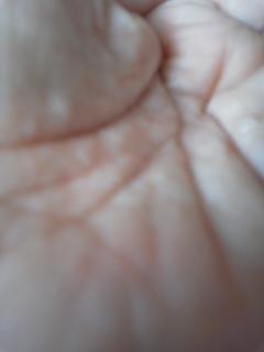 3リソウ 化粧水160804_1237~02