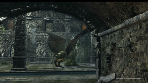 Dragons Dogma Online__122