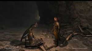Dragons Dogma Online__142
