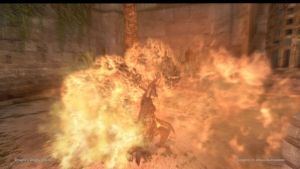 Dragons Dogma Online__149