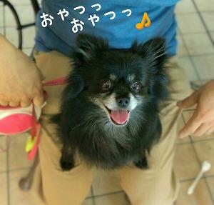 2016-09-15_100811.jpg