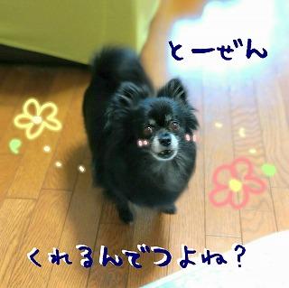 2016-09-18_16_55898.jpg