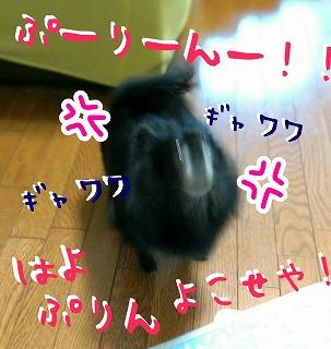 2016-09-18_16_55900.jpg