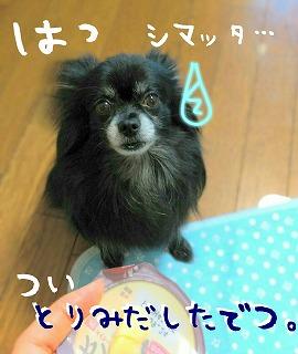 2016-09-18_16_55902.jpg