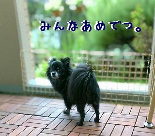 2016-09-21_23_56081.jpg