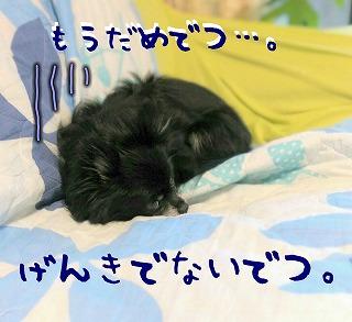 2016-09-25_14_56874.jpg