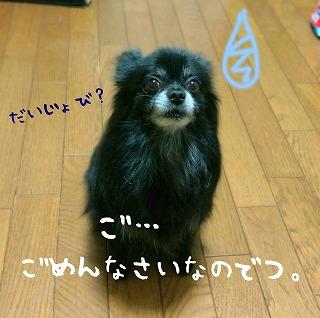 2016-10-13_22_58427.jpg