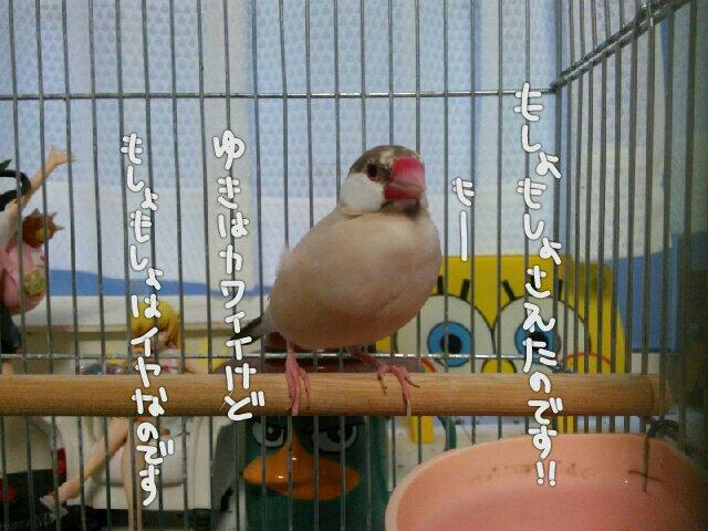 201609101800198a1.jpg