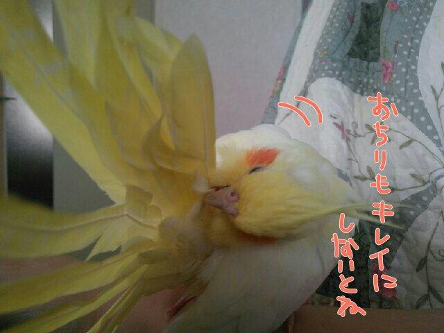 201610131200532f4.jpg