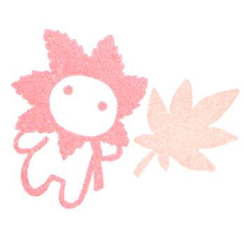 紅葉子セット色見本