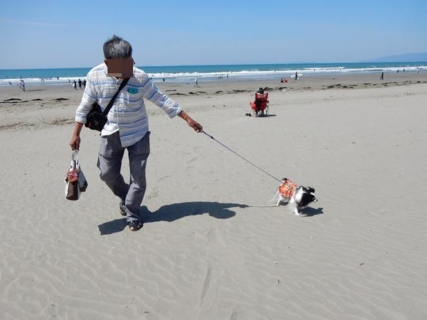 パパと砂浜をお散歩