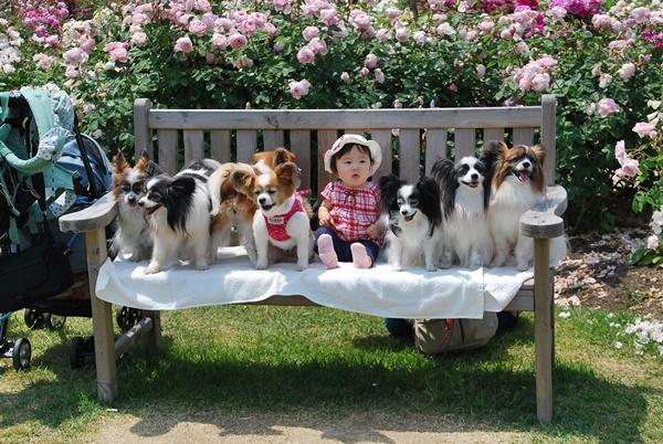 かほちゃんも一緒にベンチで1