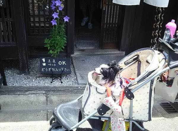 ペットOKのお店