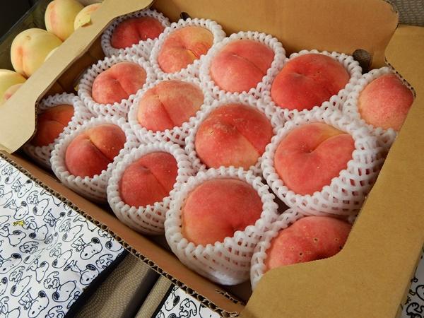 根来さくらの里購入桃