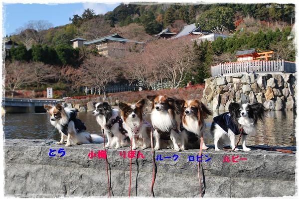 2012年勝尾寺にて集合写真
