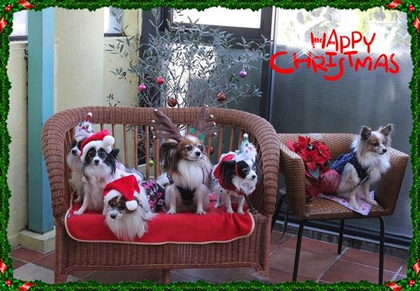 2012年EZカフェでクリスマス集合写真