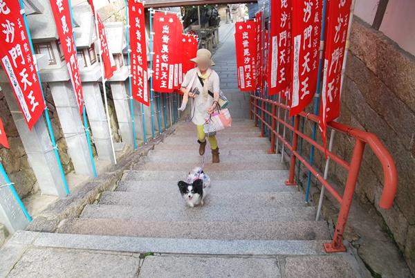 階段を駆け上がるルビー