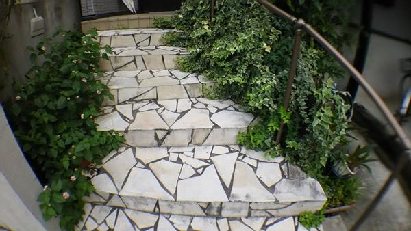 階段ワイド