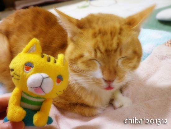 chiba16-04-06.jpg
