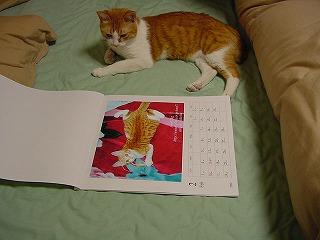 sasuke2001-12-1.jpg