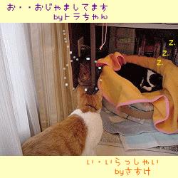 sasuke2002-3-1.jpg