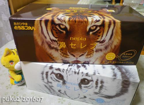 tiger16-07-02s.jpg