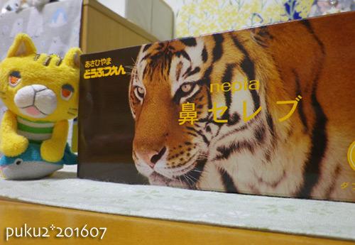 tiger16-07-03s.jpg
