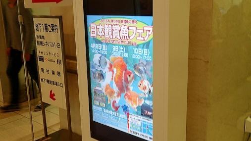 2016-04-10 第34回日本観賞魚フェア (52)