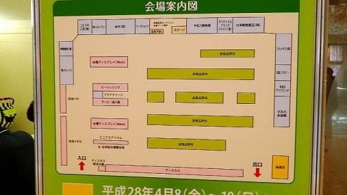 2016-04-10 第34回日本観賞魚フェア (51)