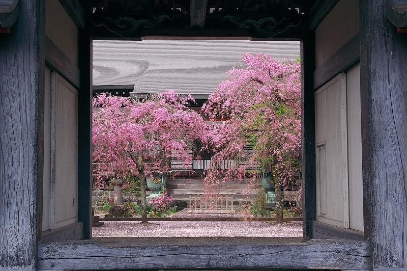 春へと向かう門